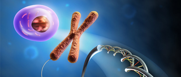 Deacetylation of Neighbor Nucleosomes by Rpd3S dna chromosome epigenetics