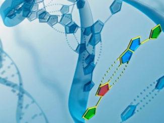 DNMT1-Interacting RNAs Block Gene-Specific DNA Methylation