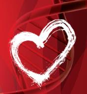 Heart-DNA