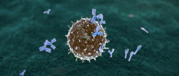 New Research Sheds Light on the Epigenetics of Common Variable Immunodeficiency