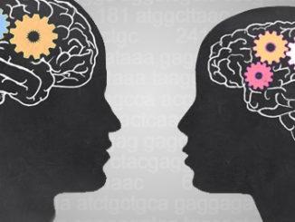 DNA Methyltransferase (DNMT) Control the Brain's 'Gender'?