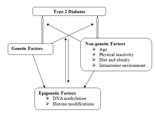 Epigenetics Mechanisms Involved in Diabetes Development