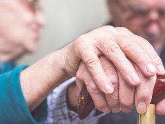 epigenetics, aging, and memory in the elderly