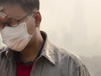 pollution-epigenetics