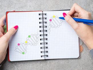 Epigenetic Marks on DNA Determine Left or Right Handedness