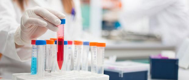 dna methylation research epigenetics growing field