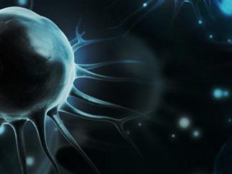 hydroxymethylation stem cells epigenetics