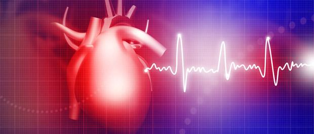 dna methylation epigenetic changes blood vessels heart arteries