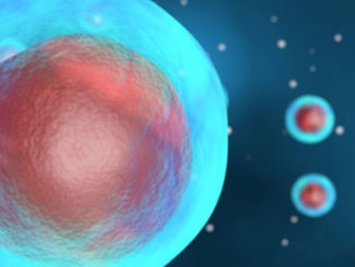 New Single-Cell Bisulfite Sequencing Technique Boosts Epigenetic Research
