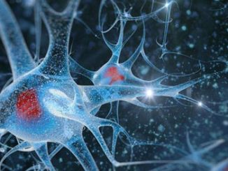 alzheimers neurons epigenetic modification dna methylation