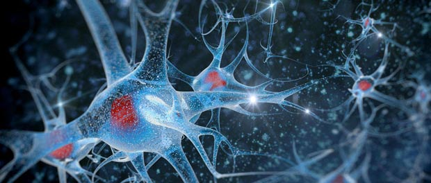 Expanding Knowledge of DNA Methylation and Alzheimer's Disease