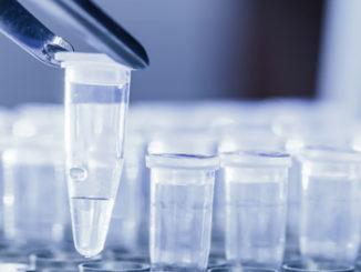 dna methylation analysis tool epigentek