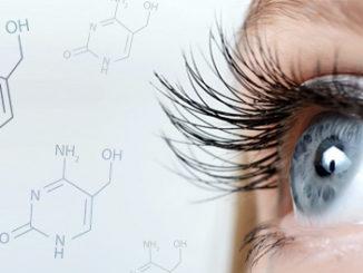5-hmC DNA Hydroxymethylation Affects Retinal Development