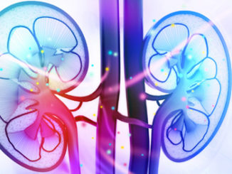 HDAC inhibitors reduces kidney damage from cancer chemotherapy drug