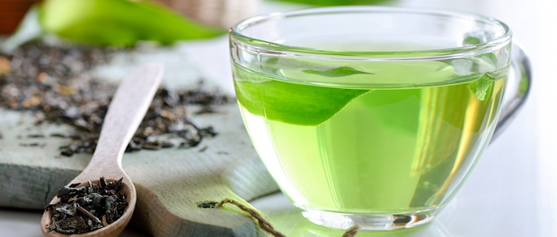 epigenetics dna methylation green tea and EGCG