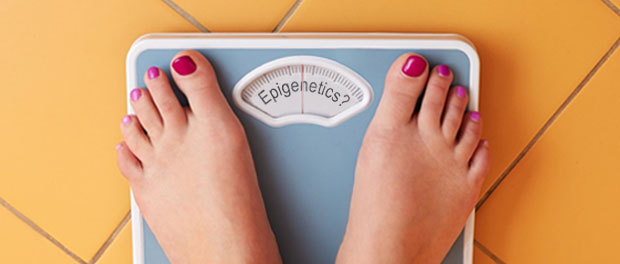 Could Common Chemicals Tip the Epigenetic Balance and Program Someone for Obesity?