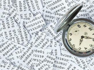 DNA methylation and epigenetic clock