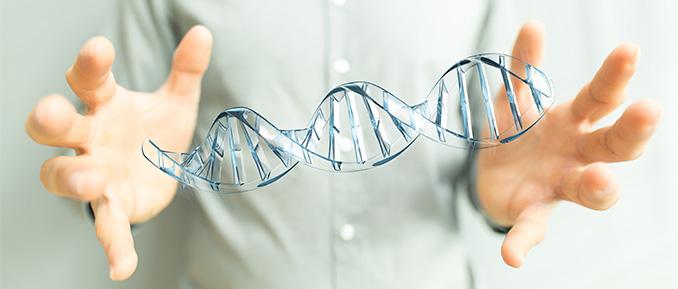 CRISPR Cas9 gene editing system