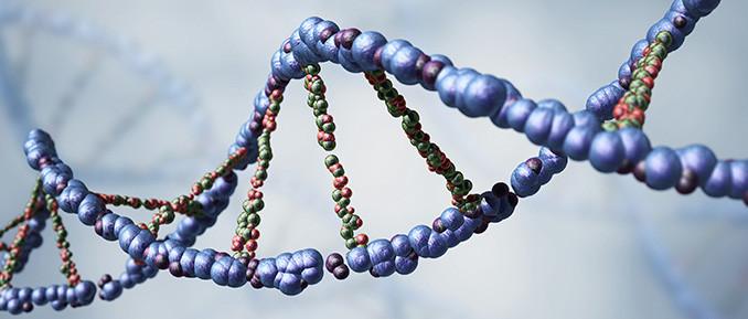 dna damage RNA methylation