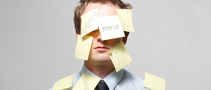 Stress and Epigenetics Affect Mental Health