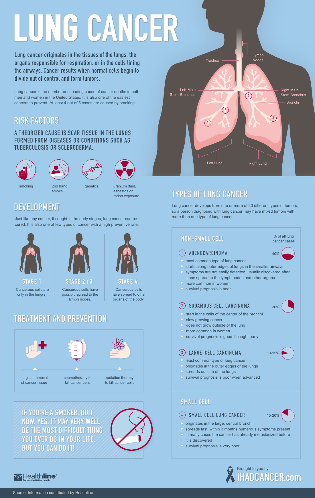 Smoking causes lung cancer study