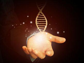 Exploring the Possibility of Extending Lifespan Using Epigenetic Drift