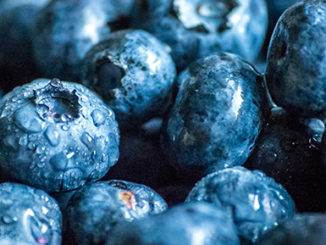 Eipgenetic Health Benefits of Eating Blueberries