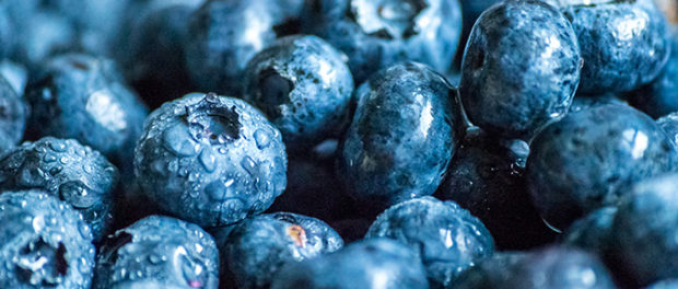 The Epigenetic Health Benefits of Blueberries