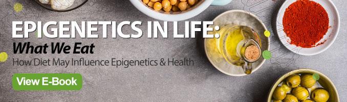 epigenetics diet