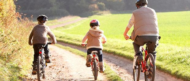 Paternal Environmental and Lifestyle Factors Influence Epigenetic Inheritance