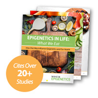 epigenetics diet book