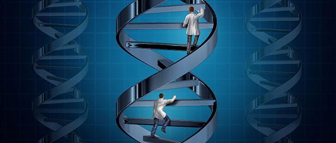 CRISPR Cas9 Epigenetic Editing