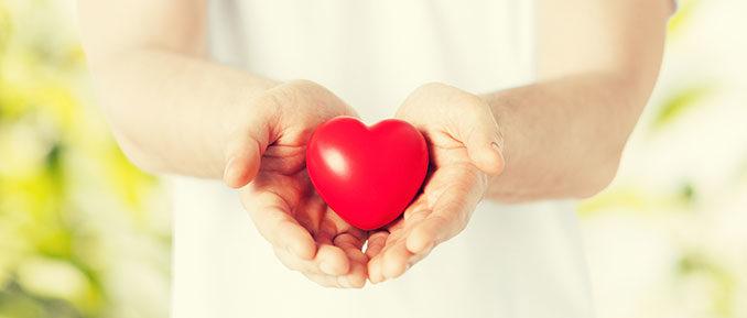 Man Holding Heart Epigenetics