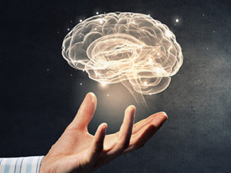 Hand Holding Brain Epigenetics
