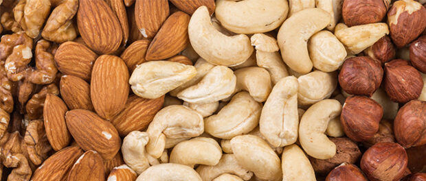 Nut Consumption Improves Sperm Parameters and May Alter Epigenome