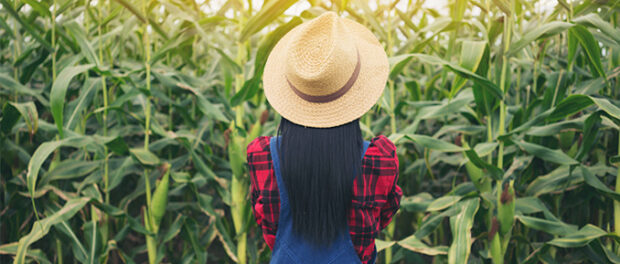 Epigenetic Mechanisms May Help Plants Remember and Adapt to Hot Weather